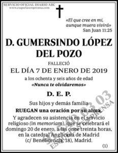 Gumersindo López del Pozo