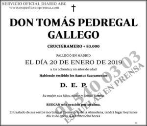 Tomás Pedregal Gallego