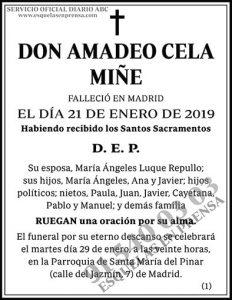 Amadeo Cela Miñe