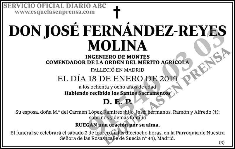 José Fernández-Reyes Molina
