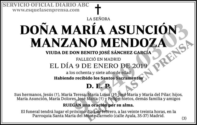 María Asunción Manzano Mendoza