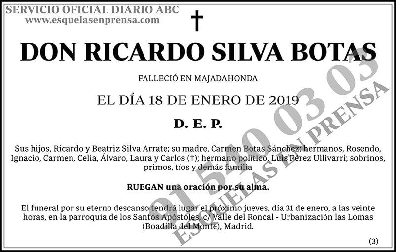 Ricardo Silva Botas