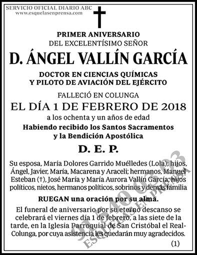 Ángel Vallín García