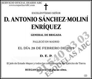 Antonio Sánchez-Moliní Enríquez