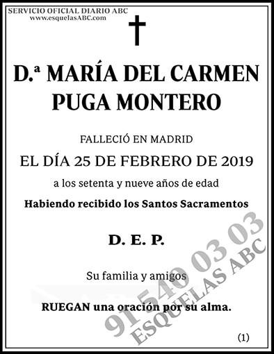 María del Carmen Puga Montero