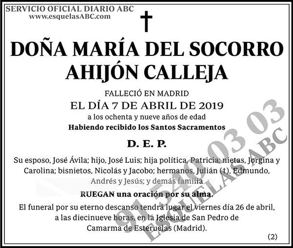 María del Socorro Ahijón Calleja