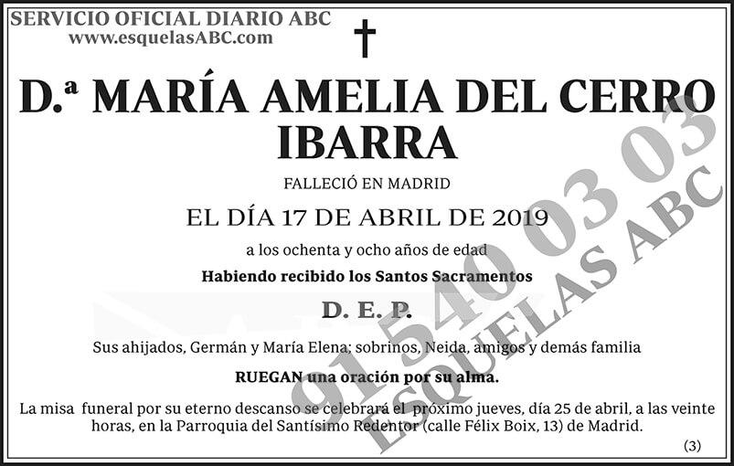 María Amelia Del Cerro Ibarra