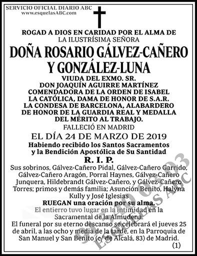 Rosario Gálvez-Cañero y González-Luna