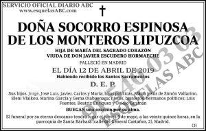 Socorro Espinosa de los Monterios Lipuzcoa