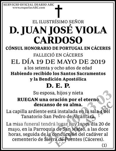 Juan José Viola Cardoso