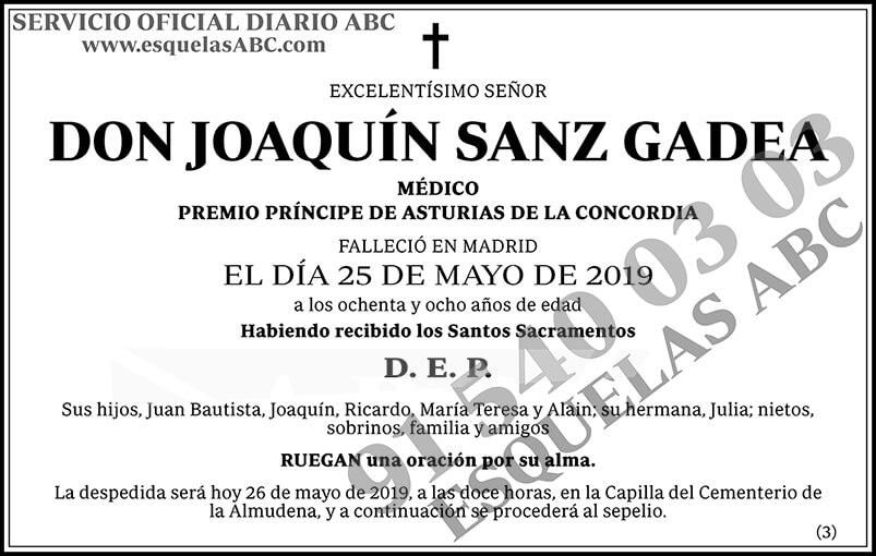 Joaquín Sanz Gadea