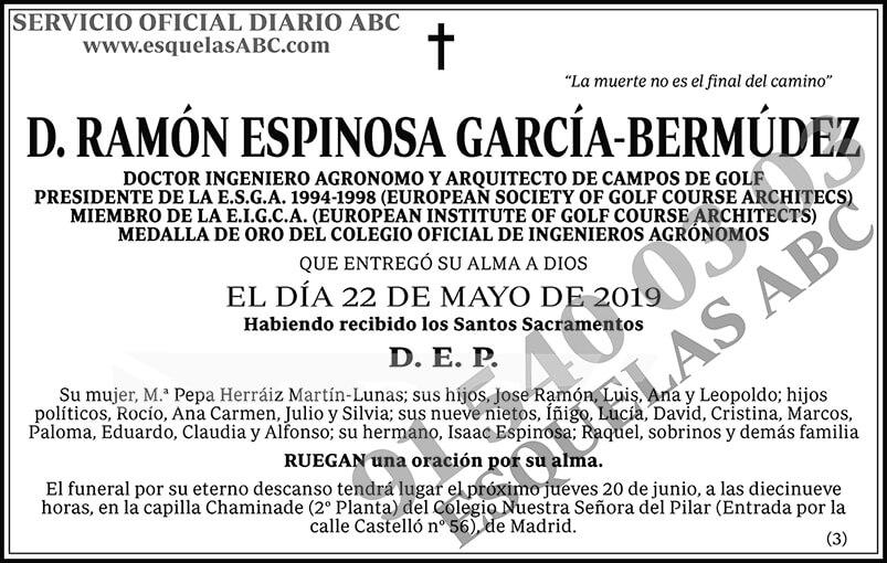 Ramón Espinosa García-Bermúdez