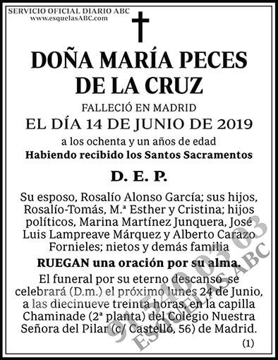 María Peces de la Cruz