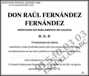 Raúl Fernández Fernández
