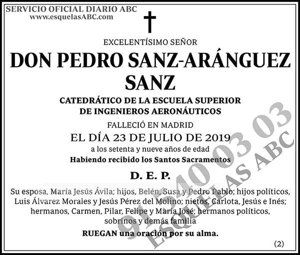 Pedro Sanz-Aránguez Sanz