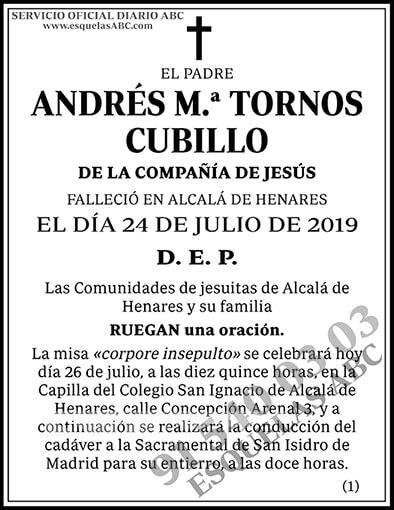 Andrés M.ª Tornos Cubillo