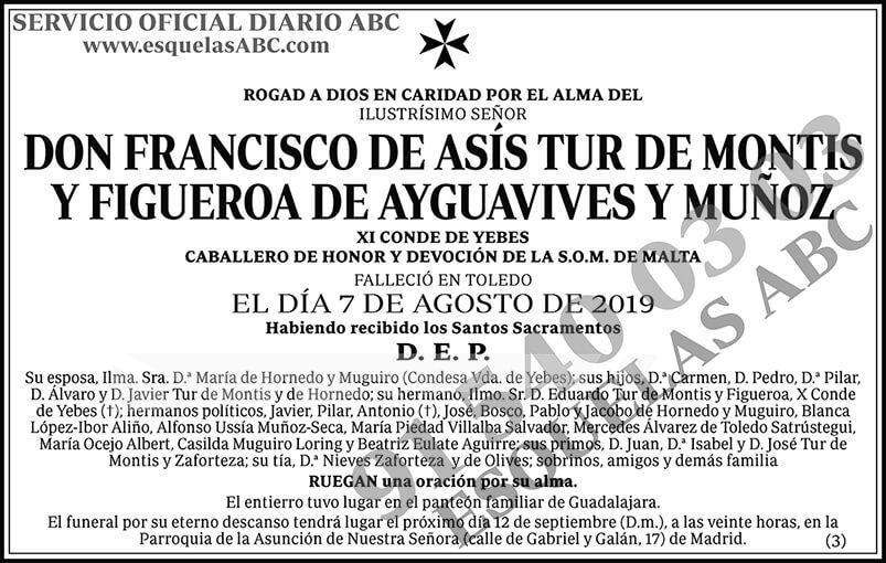 Francisco de Asís Tur de Montis y Figueroa de Ayguavives y Muñoz