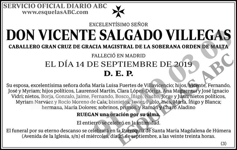 Vicente Salgado Villegas