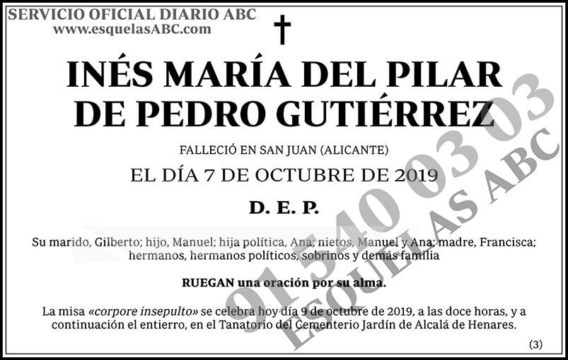 Inés María del Pilar de Pedro Gutiérrez