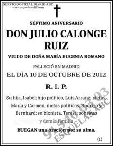 Julio Calonge Ruiz