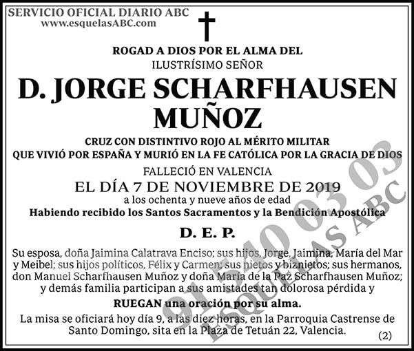 Jorge Scharfhausen Muñoz