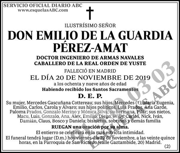 Emilio de la Guardia Pérez-Amat