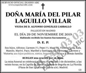 María del Pilar Laguillo Villar