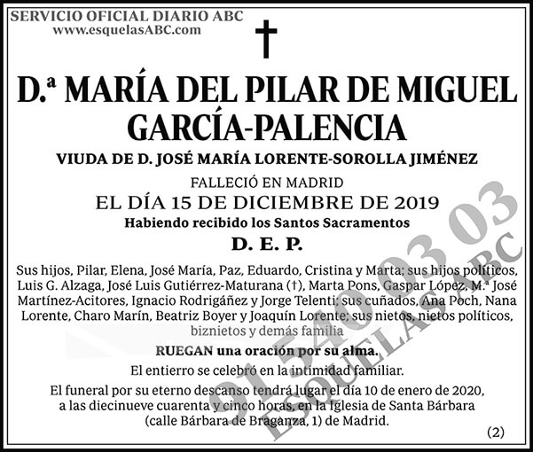 María del Pilar de Miguel García-Palencia