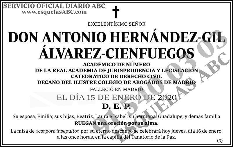 Antonio Hernández-Gil Álvarez-Cienfuegos