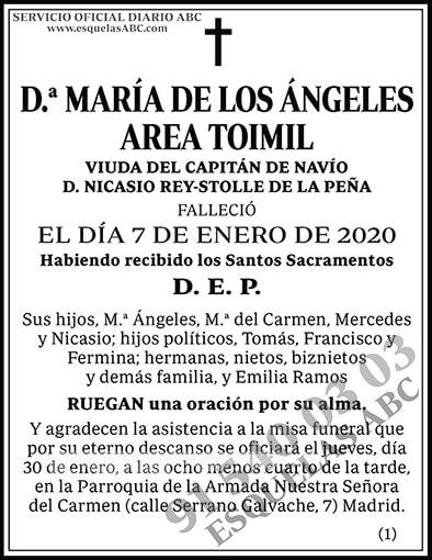 María de los Ángeles Area Toimil