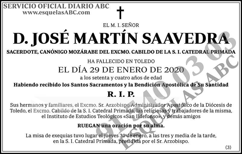 José Martín Saavedra