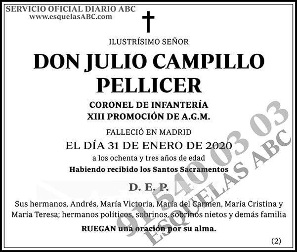 Julio Campillo Pellicer