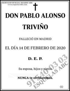 Pablo Alonso Triviño