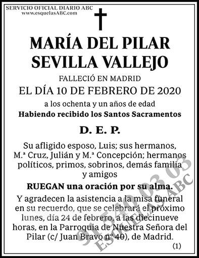 María del Pilar Sevilla Vallejo