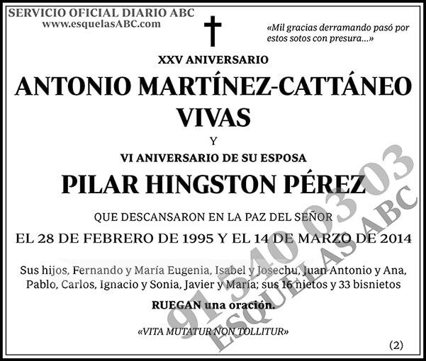 Antonio Martínez-Cattáneo Vivas